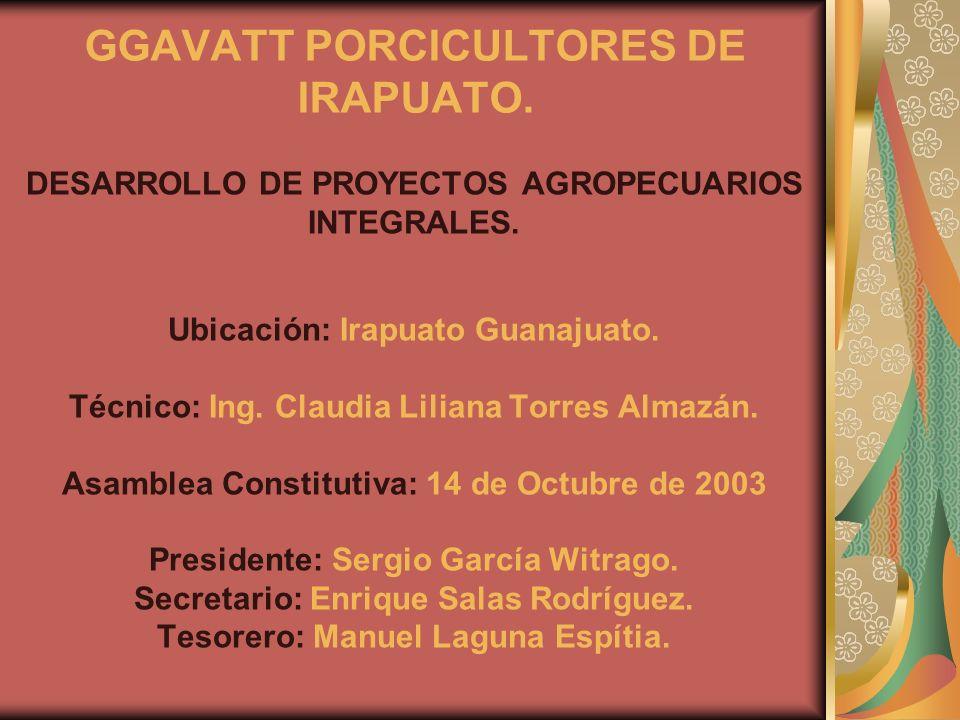 DESARROLLO DE PROYECTOS AGROPECUARIOS INTEGRALES. Ubicación: Irapuato Guanajuato. Técnico: Ing. Claudia Liliana Torres Almazán. Asamblea Constitutiva: