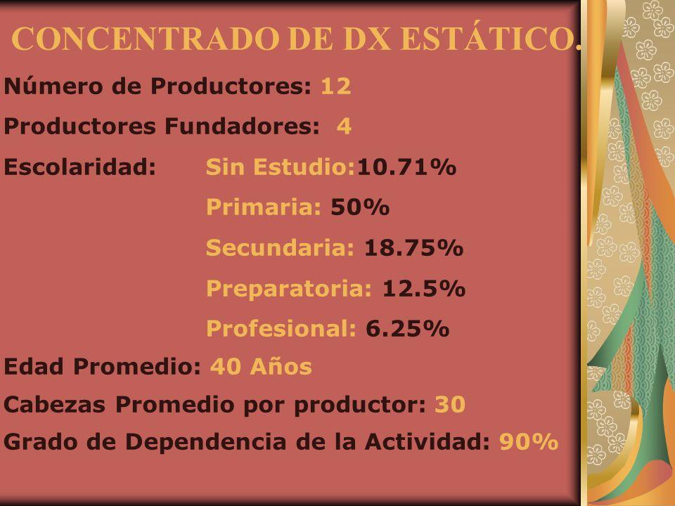 CONCENTRADO DE DX ESTÁTICO. Número de Productores: 12 Productores Fundadores: 4 Escolaridad:Sin Estudio:10.71% Primaria: 50% Secundaria: 18.75% Prepar