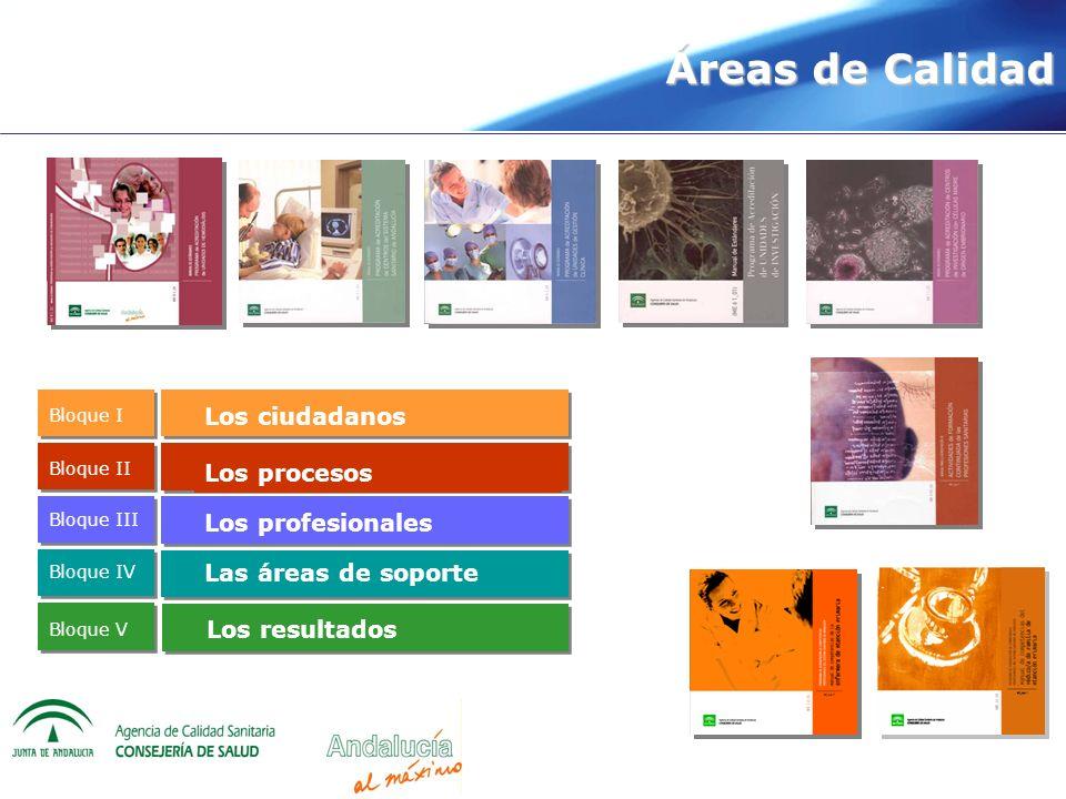 Áreas de Calidad Los ciudadanos Los procesos Los profesionales Las áreas de soporte Bloque I Bloque II Bloque III Bloque IV Bloque V Los resultados