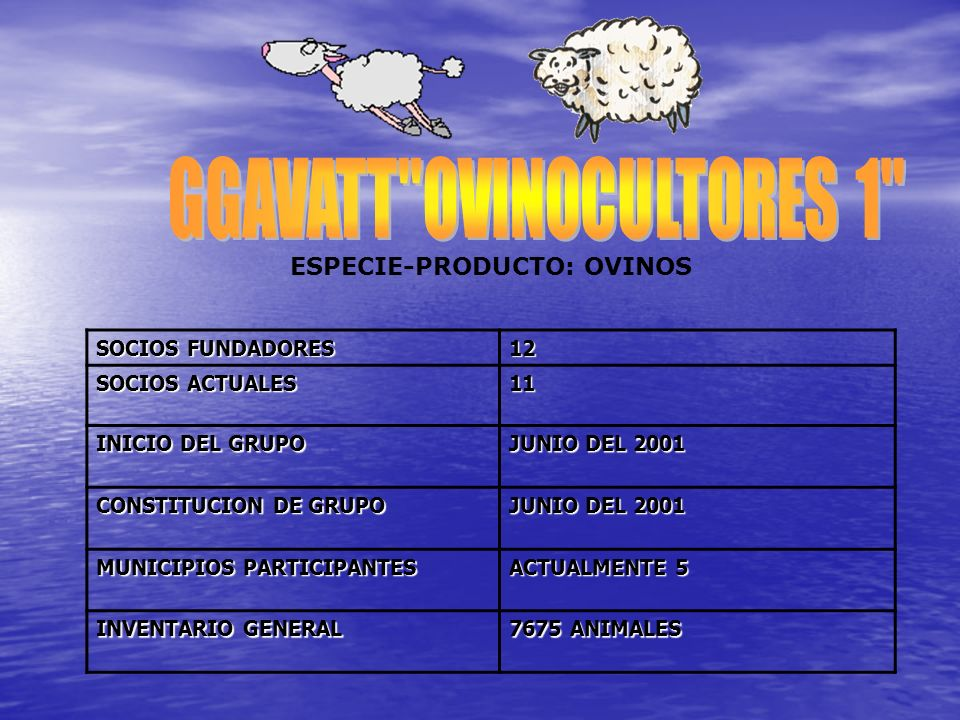 SOCIOS FUNDADORES 12 SOCIOS ACTUALES 11 INICIO DEL GRUPO JUNIO DEL 2001 CONSTITUCION DE GRUPO JUNIO DEL 2001 MUNICIPIOS PARTICIPANTES ACTUALMENTE 5 IN