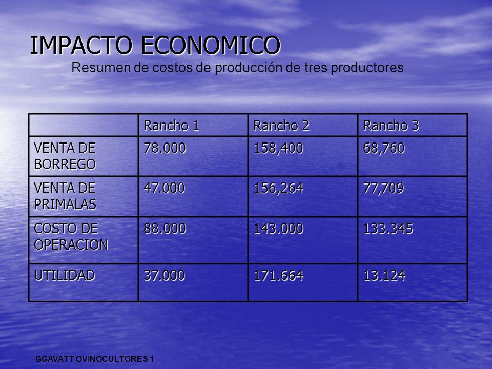 IMPACTO ECONOMICO GGAVATT OVINOCULTORES 1 Resumen de costos de producción de tres productores Rancho 1 Rancho 2 Rancho 3 VENTA DE BORREGO 78.000158,40
