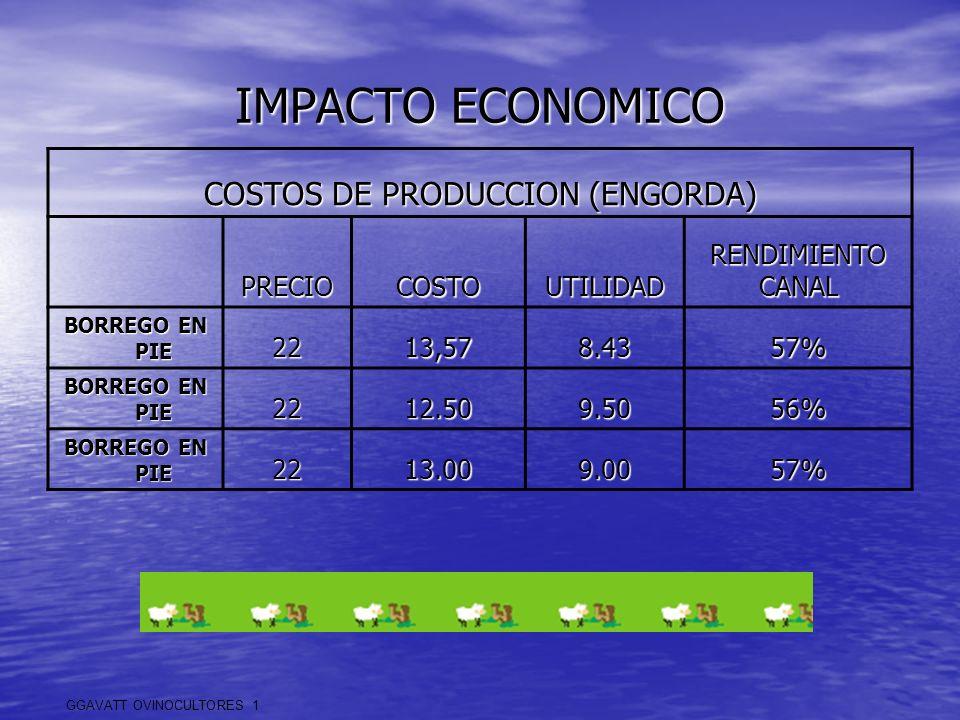 IMPACTO ECONOMICO COSTOS DE PRODUCCION (ENGORDA) PRECIOCOSTOUTILIDADRENDIMIENTOCANAL BORREGO EN PIE 2213,578.4357% 2212.509.5056% 2213.009.0057% GGAVA