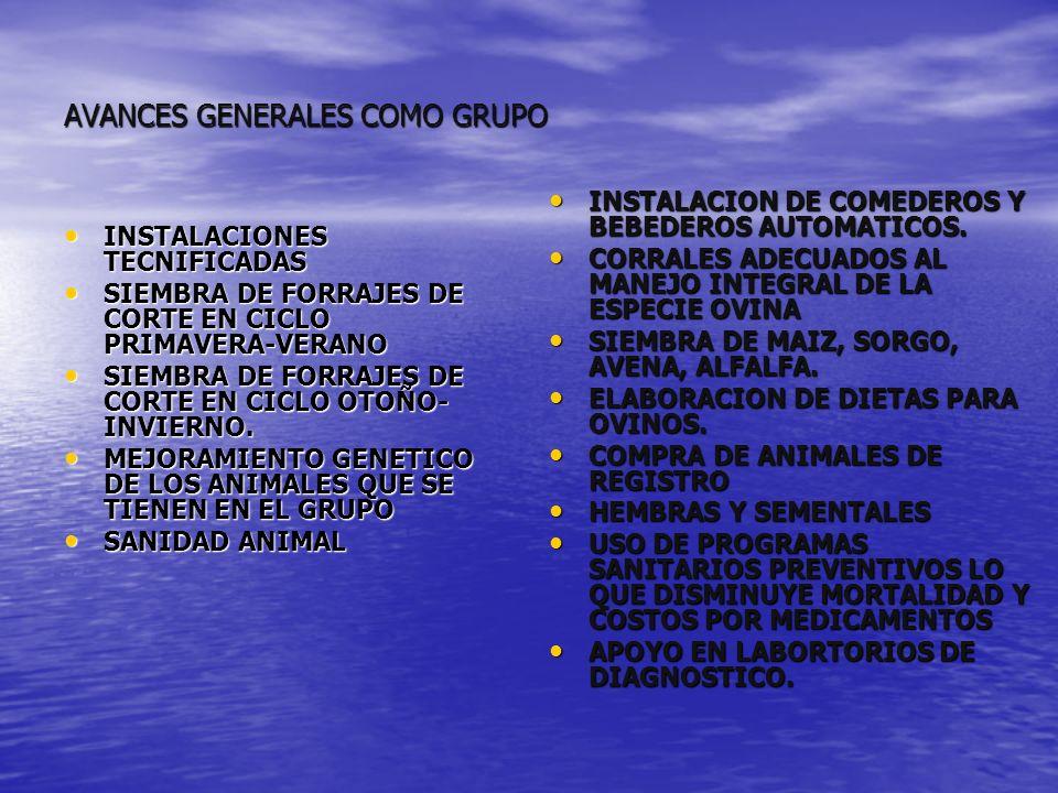 AVANCES GENERALES COMO GRUPO INSTALACIONES TECNIFICADAS INSTALACIONES TECNIFICADAS SIEMBRA DE FORRAJES DE CORTE EN CICLO PRIMAVERA-VERANO SIEMBRA DE F