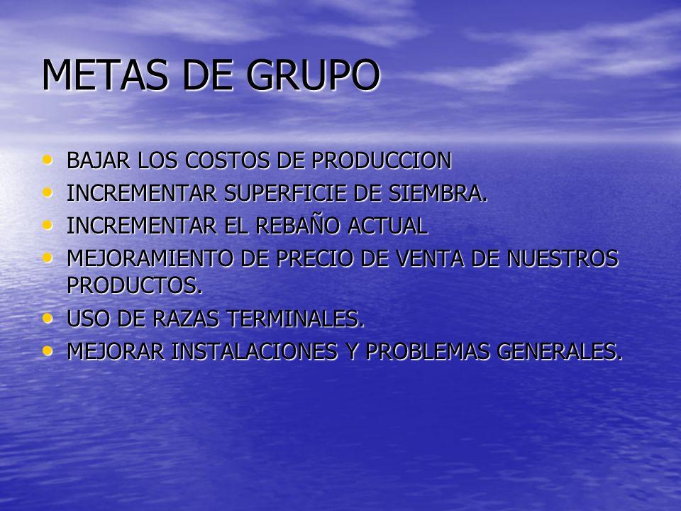 METAS DE GRUPO BAJAR LOS COSTOS DE PRODUCCION BAJAR LOS COSTOS DE PRODUCCION INCREMENTAR SUPERFICIE DE SIEMBRA. INCREMENTAR SUPERFICIE DE SIEMBRA. INC