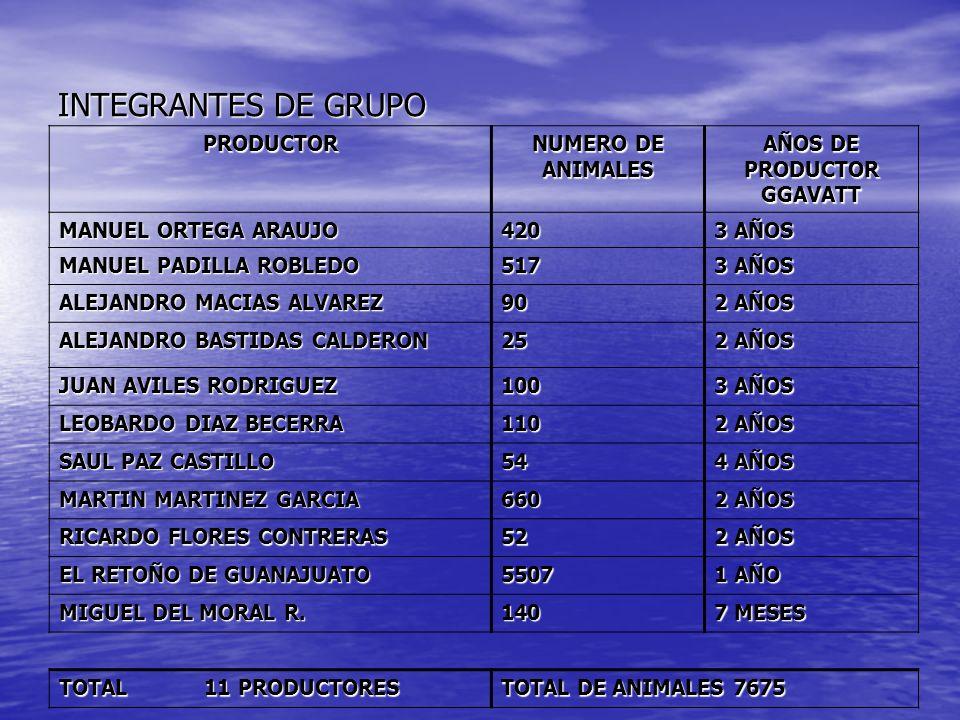 INTEGRANTES DE GRUPO PRODUCTOR NUMERO DE ANIMALES AÑOS DE PRODUCTOR GGAVATT MANUEL ORTEGA ARAUJO 420 3 AÑOS MANUEL PADILLA ROBLEDO 517 3 AÑOS ALEJANDR