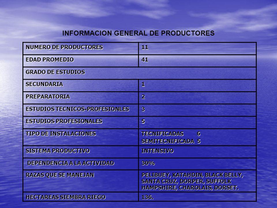NUMERO DE PRODUCTORES 11 EDAD PROMEDIO 41 GRADO DE ESTUDIOS SECUNDARIA1 PREPARATORIA2 ESTUDIOS TECNICOS-PROFESIONLES 3 ESTUDIOS PROFESIONALES 5 TIPO D