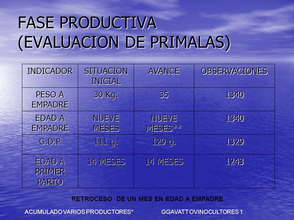 FASE PRODUCTIVA (EVALUACION DE PRIMALAS) INDICADOR SITUACION INICIAL AVANCEOBSERVACIONES PESO A EMPADRE 30 Kg. 351340 EDAD A EMPADRE NUEVE MESES NUEVE