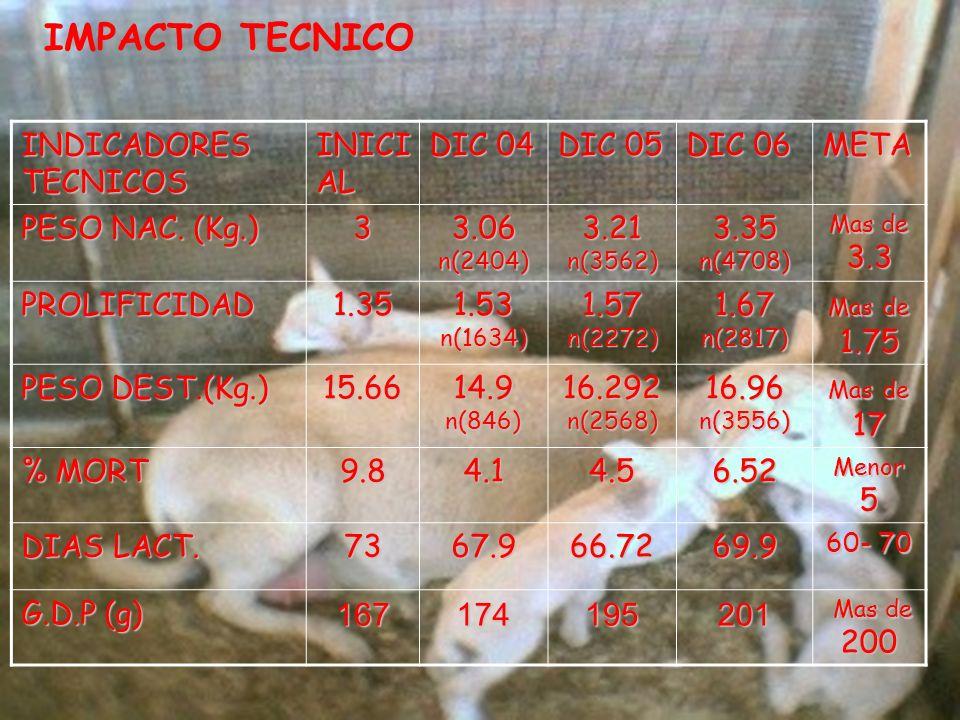 IMPACTO TECNICO INDICADORES TECNICOS INICI AL DIC 04 DIC 05 DIC 06 META PESO NAC.