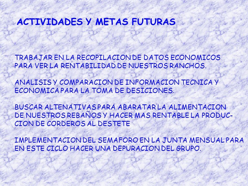 ACTIVIDADES Y METAS FUTURAS TRABAJAR EN LA RECOPILACION DE DATOS ECONOMICOS PARA VER LA RENTABILIDAD DE NUESTROS RANCHOS.
