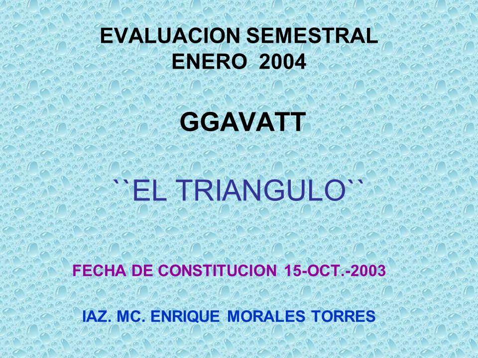EVALUACION SEMESTRAL ENERO 2004 GGAVATT ``EL TRIANGULO`` FECHA DE CONSTITUCION 15-OCT.-2003 IAZ. MC. ENRIQUE MORALES TORRES
