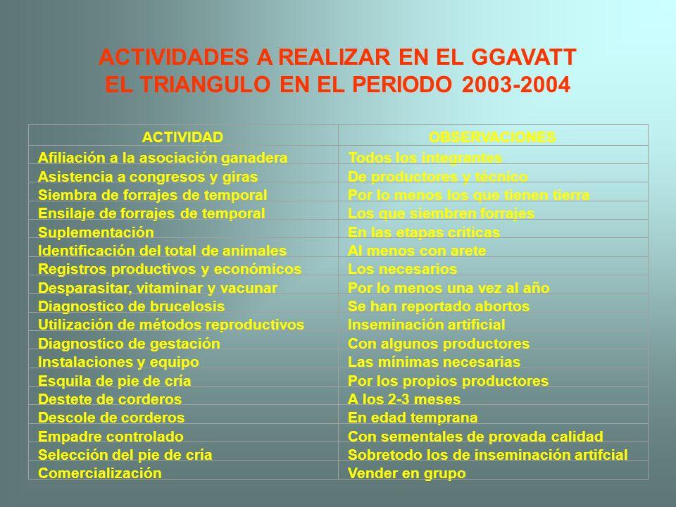 ACTIVIDADES A REALIZAR EN EL GGAVATT EL TRIANGULO EN EL PERIODO 2003-2004 ACTIVIDADOBSERVACIONES Afiliación a la asociación ganaderaTodos los integran