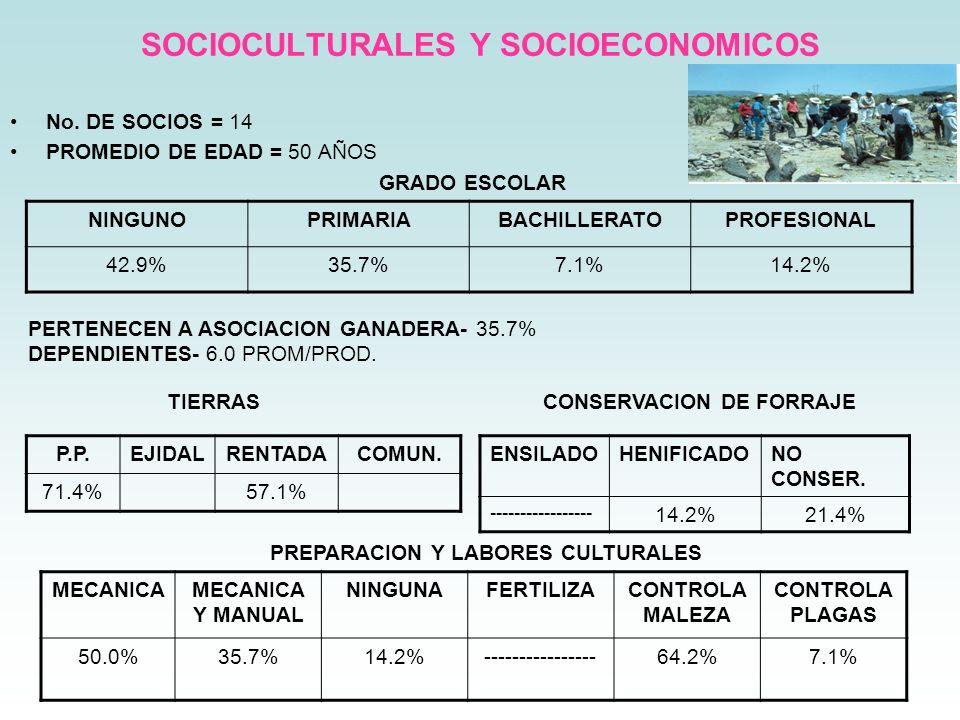 SOCIOCULTURALES Y SOCIOECONOMICOS No. DE SOCIOS = 14 PROMEDIO DE EDAD = 50 AÑOS GRADO ESCOLAR NINGUNOPRIMARIABACHILLERATOPROFESIONAL 42.9%35.7%7.1%14.