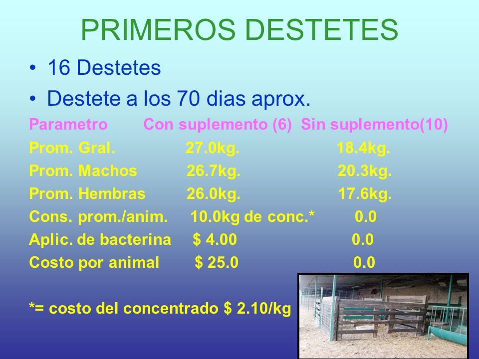 PRIMEROS DESTETES 16 Destetes Destete a los 70 dias aprox. Parametro Con suplemento (6) Sin suplemento(10) Prom. Gral. 27.0kg. 18.4kg. Prom. Machos 26