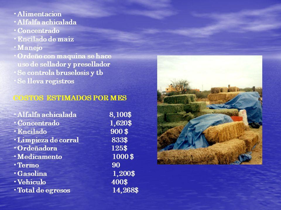 Alimentacion Alfalfa achicalada Concentrado Encilado de maiz Manejo Ordeño con maquina se hace uso de sellador y presellador Se controla bruselosis y