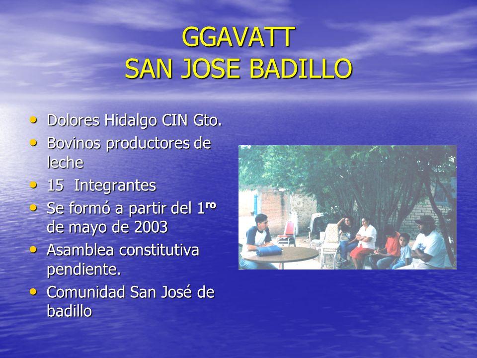 GGAVATT SAN JOSE BADILLO Dolores Hidalgo CIN Gto. Dolores Hidalgo CIN Gto. Bovinos productores de leche Bovinos productores de leche 15 Integrantes 15