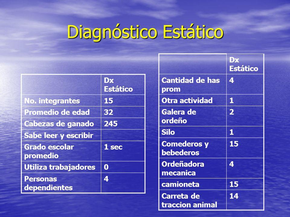 Diagnóstico Estático Dx Estático No. integrantes15 Promedio de edad32 Cabezas de ganado245 Sabe leer y escribir Grado escolar promedio 1 sec Utiliza t