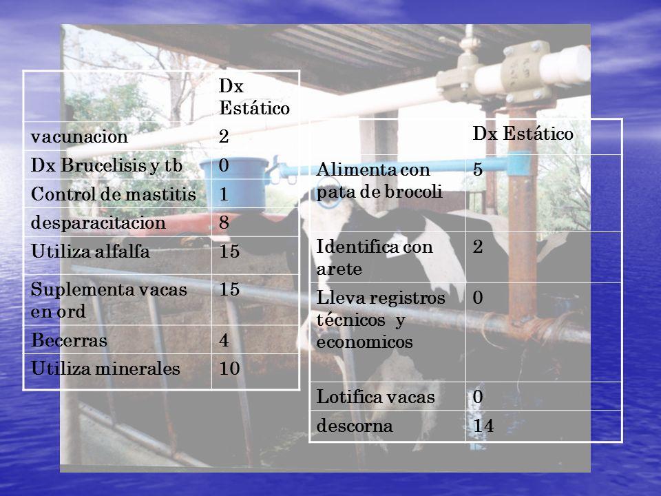 Dx Estático vacunacion2 Dx Brucelisis y tb0 Control de mastitis1 desparacitacion8 Utiliza alfalfa15 Suplementa vacas en ord 15 Becerras4 Utiliza miner