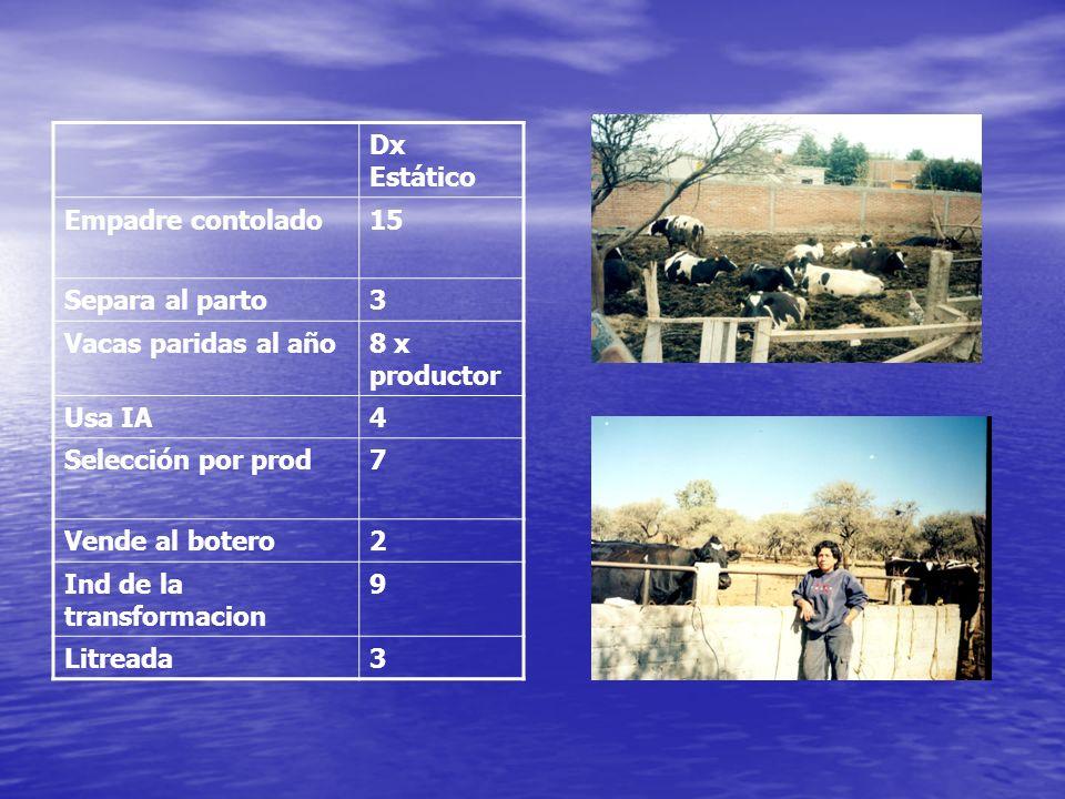 Dx Estático Empadre contolado15 Separa al parto3 Vacas paridas al año8 x productor Usa IA4 Selección por prod7 Vende al botero2 Ind de la transformaci