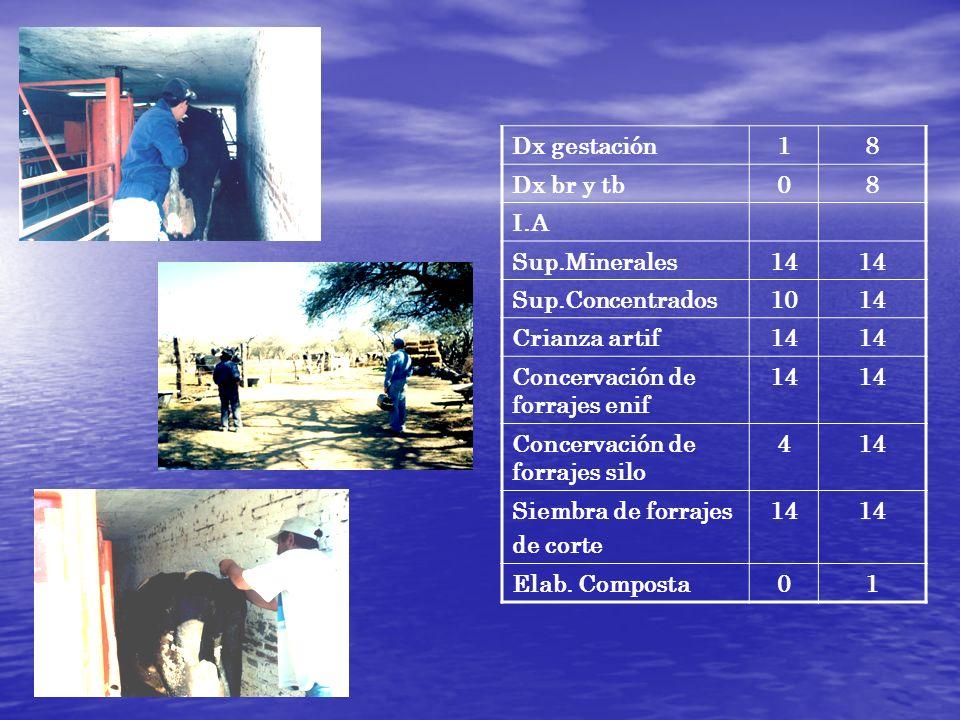 Dx gestación18 Dx br y tb08 I.A Sup.Minerales14 Sup.Concentrados1014 Crianza artif14 Concervación de forrajes enif 14 Concervación de forrajes silo 41