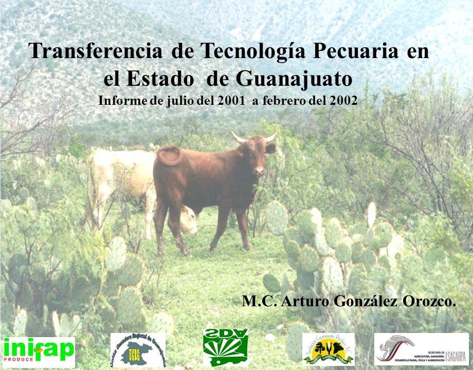 Transferencia de Tecnología Pecuaria en el Estado de Guanajuato Informe de julio del 2001 a febrero del 2002 M.C. Arturo González Orozco.
