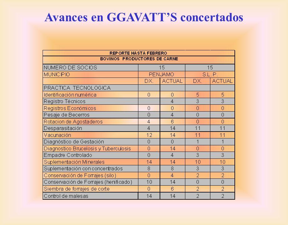 Avances en GGAVATTS concertados