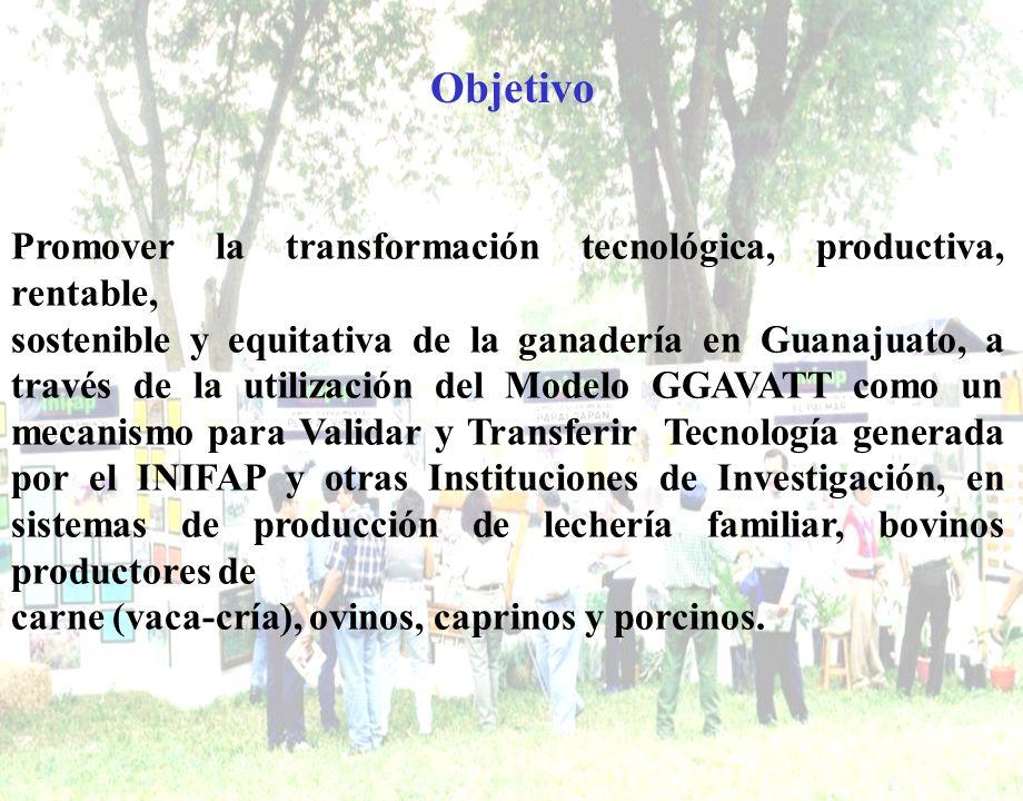Objetivo Promover la transformación tecnológica, productiva, rentable, sostenible y equitativa de la ganadería en Guanajuato, a través de la utilizaci