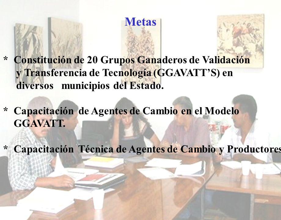 Metas * Constitución de 20 Grupos Ganaderos de Validación y Transferencia de Tecnología (GGAVATTS) en diversos municipios del Estado. * Capacitación d
