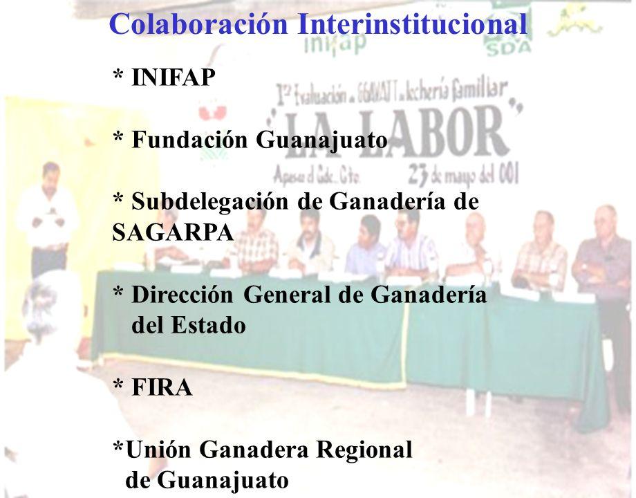 Colaboración Interinstitucional * INIFAP * Fundación Guanajuato * Subdelegación de Ganadería de SAGARPA * Dirección General de Ganadería del Estado *