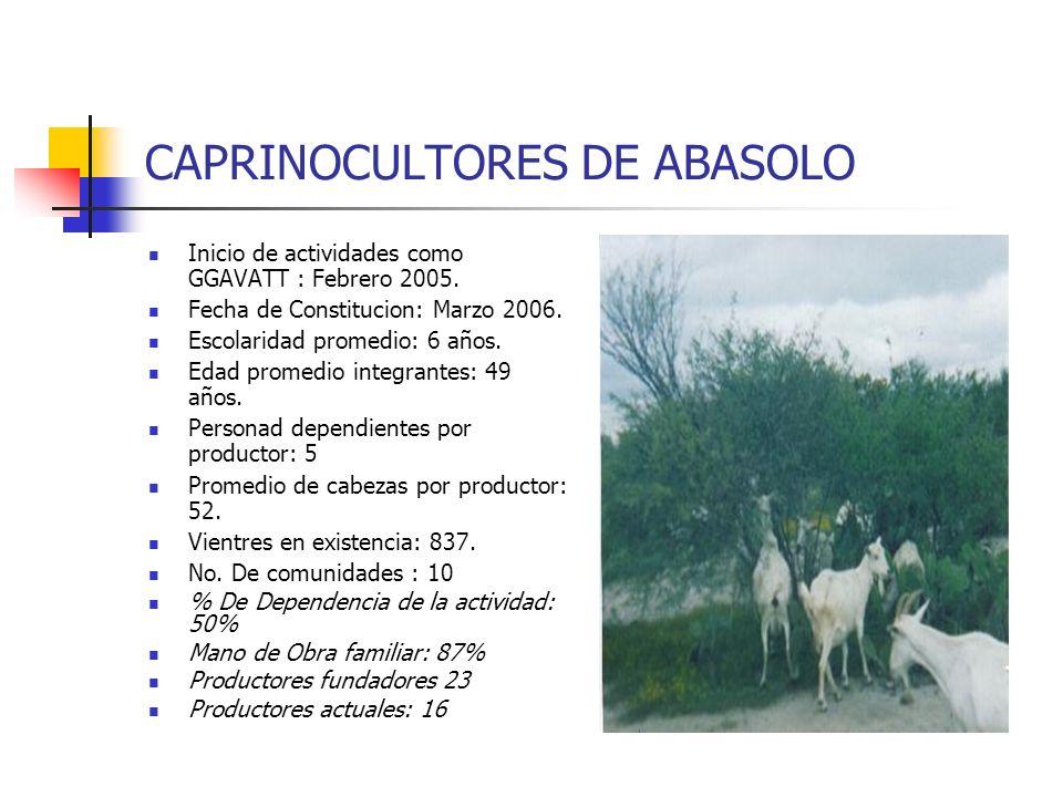 CAPRINOCULTORES DE ABASOLO Inicio de actividades como GGAVATT : Febrero 2005. Fecha de Constitucion: Marzo 2006. Escolaridad promedio: 6 años. Edad pr