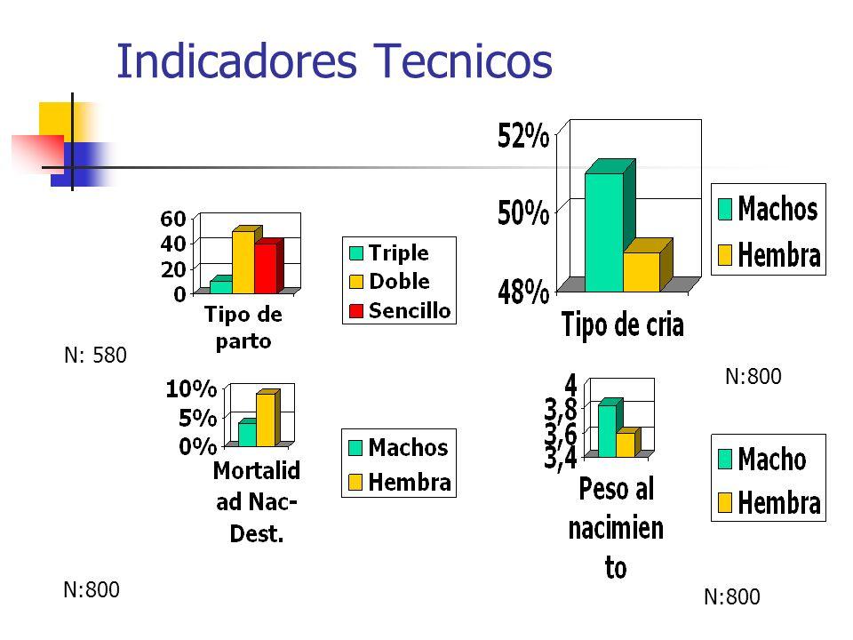 Indicadores Tecnicos N: 580 N:800