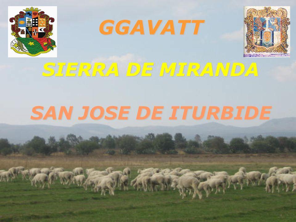 INICIO DE ACTIVIDADES: OCTUBRE DEL 2006 INICIO DE ACTIVIDADES: OCTUBRE DEL 2006 GGAVATT SIERRA DE MIRANDA GGAVATT SIERRA DE MIRANDA SAN JOSE DE ITURBIDE GTO..
