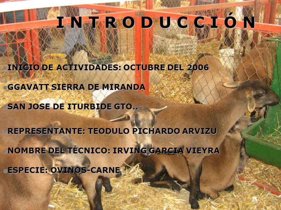 INICIO DE ACTIVIDADES: OCTUBRE DEL 2006 INICIO DE ACTIVIDADES: OCTUBRE DEL 2006 GGAVATT SIERRA DE MIRANDA GGAVATT SIERRA DE MIRANDA SAN JOSE DE ITURBI