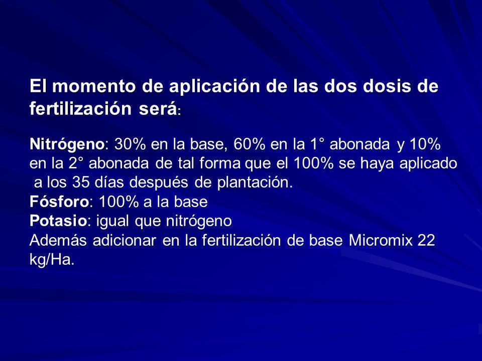 El momento de aplicación de las dos dosis de fertilización será : Nitrógeno: 30% en la base, 60% en la 1° abonada y 10% en la 2° abonada de tal forma