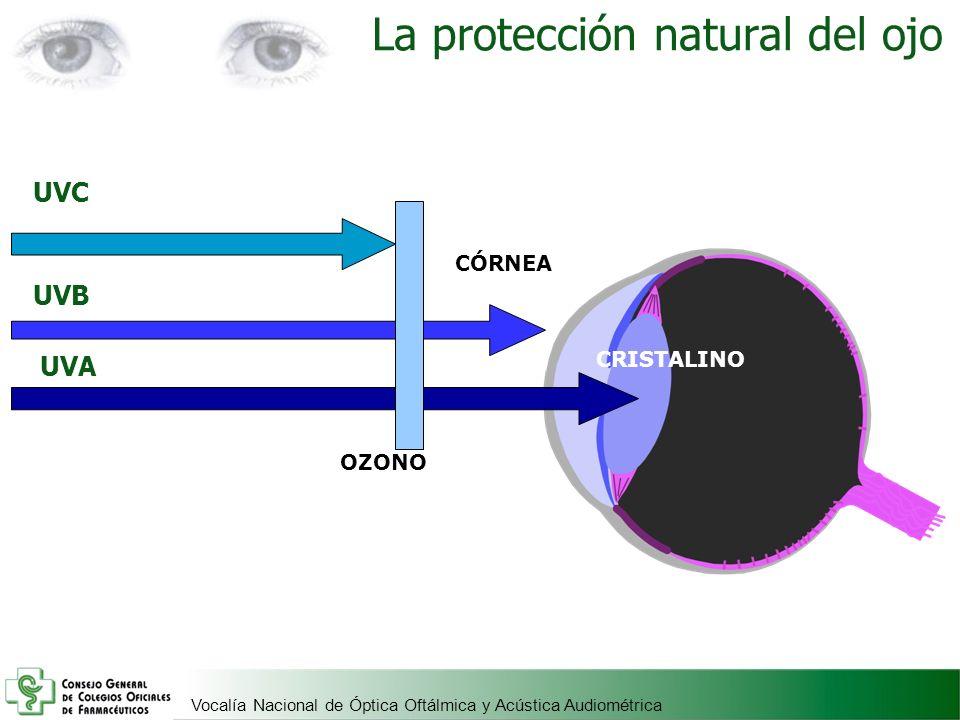 Vocalía Nacional de Óptica Oftálmica y Acústica Audiométrica UVC CÓRNEA CRISTALINO OZONO UVA UVB La protección natural del ojo