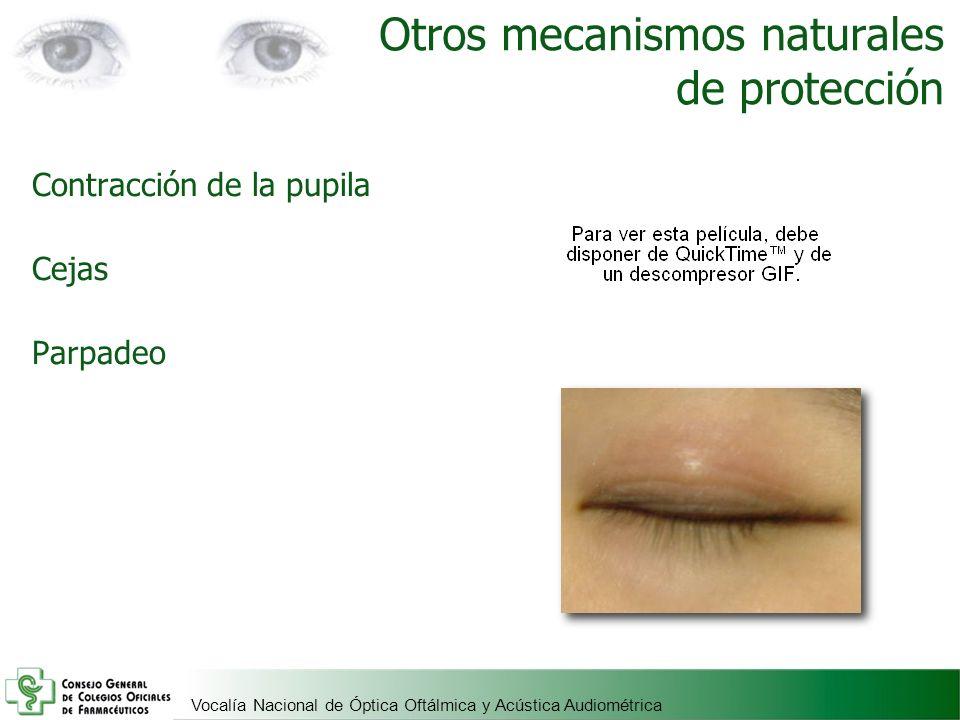 Vocalía Nacional de Óptica Oftálmica y Acústica Audiométrica Otros mecanismos naturales de protección Contracción de la pupila Cejas Parpadeo