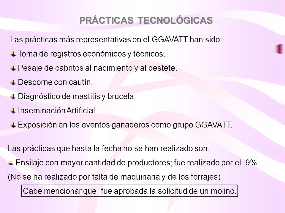 PRÁCTICAS TECNOLÓGICAS Las prácticas más representativas en el GGAVATT han sido: Toma de registros económicos y técnicos. Pesaje de cabritos al nacimi