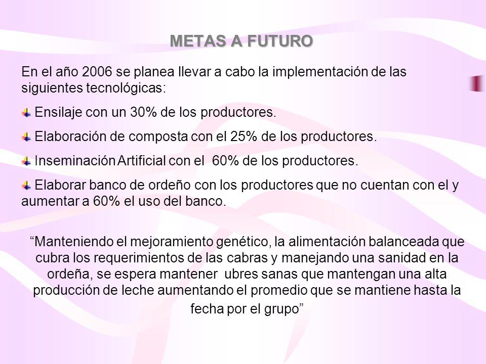 METAS A FUTURO En el año 2006 se planea llevar a cabo la implementación de las siguientes tecnológicas: Ensilaje con un 30% de los productores. Elabor