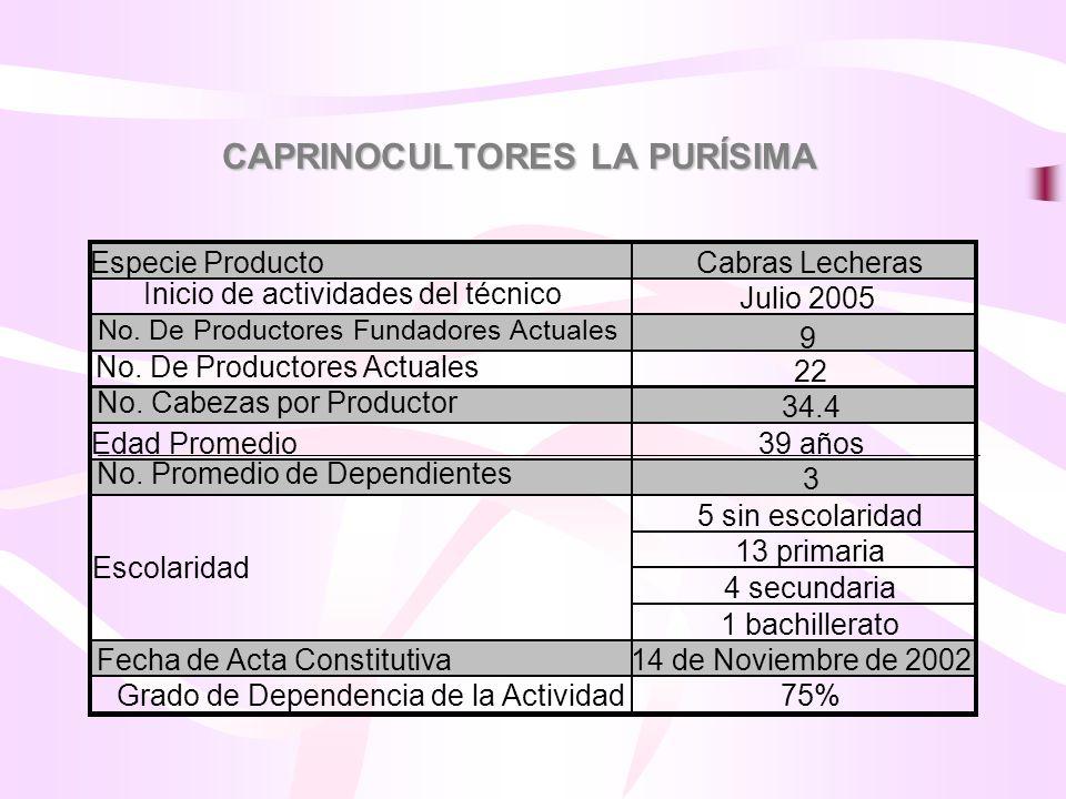 CAPRINOCULTORES LA PURÍSIMA Especie ProductoCabras Lecheras Inicio de actividades del técnico Julio 2005 No. De Productores Fundadores Actuales 9 No.