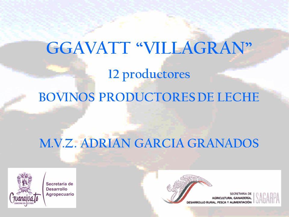 GGAVATT VILLAGRAN 12 productores BOVINOS PRODUCTORES DE LECHE M.V.Z. ADRIAN GARCIA GRANADOS