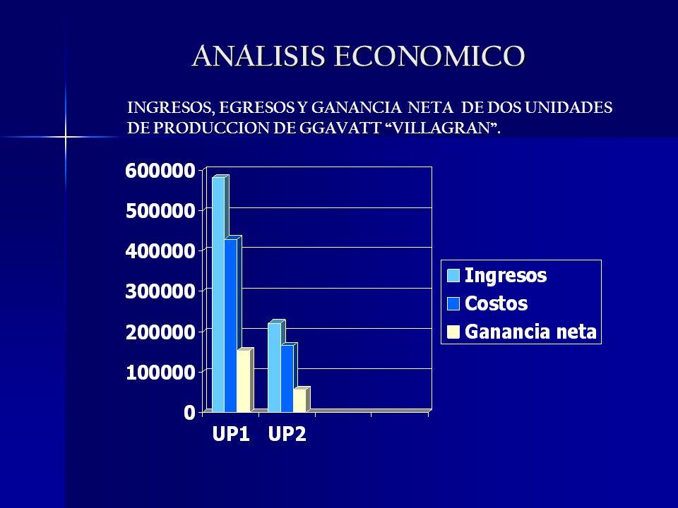 ANALISIS ECONOMICO INGRESOS, EGRESOS Y GANANCIA NETA DE DOS UNIDADES DE PRODUCCION DE GGAVATT VILLAGRAN.