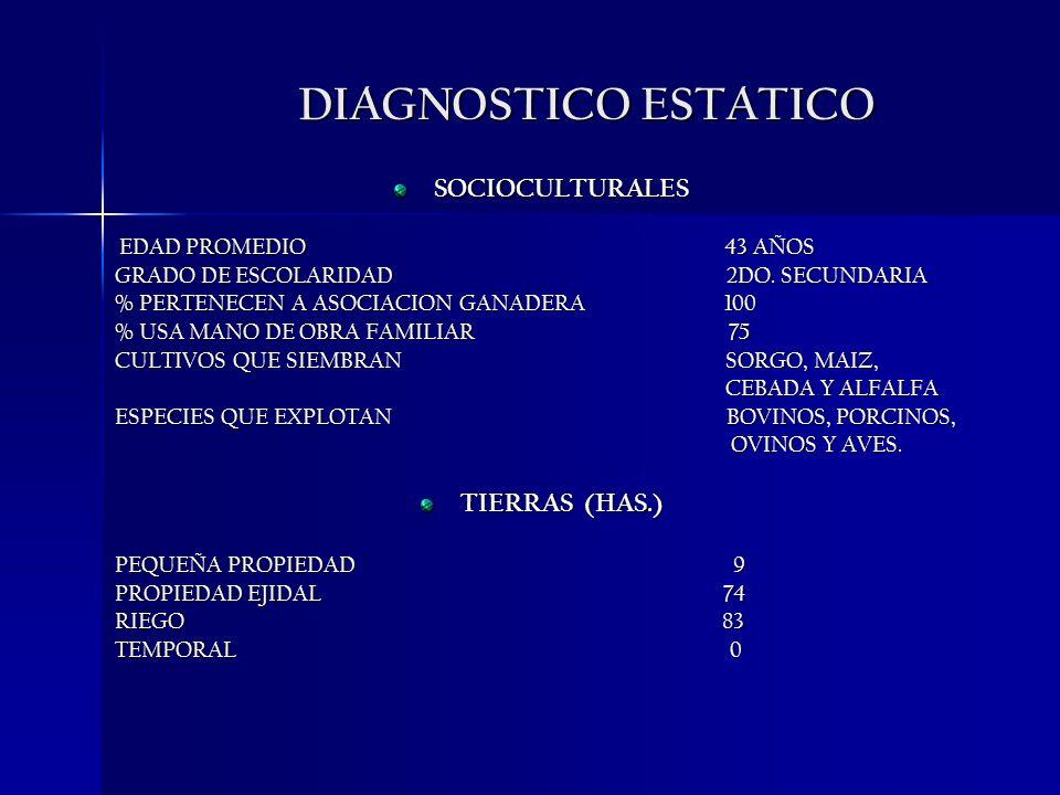 DIAGNOSTICO ESTATICO SOCIOCULTURALES EDAD PROMEDIO 43 AÑOS EDAD PROMEDIO 43 AÑOS GRADO DE ESCOLARIDAD 2DO. SECUNDARIA % PERTENECEN A ASOCIACION GANADE