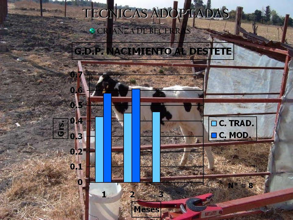 MANEJO MANEJO ANTESAHORA PESAJE DEL GANADO0 %84 % LOTIFICACION42 %66 %