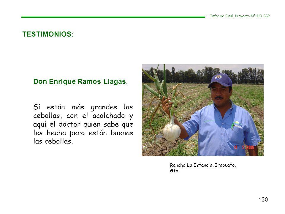 130 TESTIMONIOS: Informe Final, Proyecto N° 410 FGP Don Enrique Ramos Llagas. Sí están más grandes las cebollas, con el acolchado y aquí el doctor qui