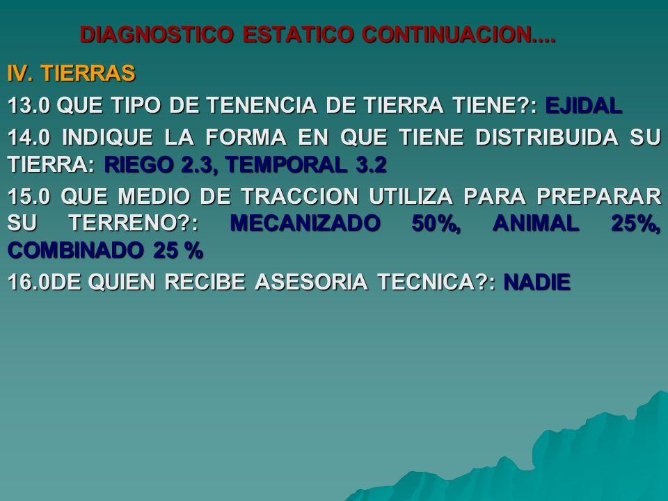 DIAGNOSTICO ESTATICO CONTINUACION.... IV.