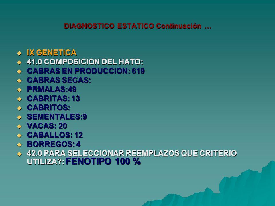 DIAGNOSTICO ESTATICO Continuación … IX GENETICA IX GENETICA 41.0 COMPOSICION DEL HATO: 41.0 COMPOSICION DEL HATO: CABRAS EN PRODUCCION: 619 CABRAS EN PRODUCCION: 619 CABRAS SECAS: CABRAS SECAS: PRMALAS:49 PRMALAS:49 CABRITAS: 13 CABRITAS: 13 CABRITOS: CABRITOS: SEMENTALES:9 SEMENTALES:9 VACAS: 20 VACAS: 20 CABALLOS: 12 CABALLOS: 12 BORREGOS: 4 BORREGOS: 4 42.0 PARA SELECCIONAR REEMPLAZOS QUE CRITERIO UTILIZA : FENOTIPO 100 % 42.0 PARA SELECCIONAR REEMPLAZOS QUE CRITERIO UTILIZA : FENOTIPO 100 %