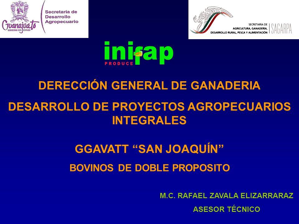 DERECCIÓN GENERAL DE GANADERIA DESARROLLO DE PROYECTOS AGROPECUARIOS INTEGRALES GGAVATT SAN JOAQUÍN BOVINOS DE DOBLE PROPOSITO M.C. RAFAEL ZAVALA ELIZ