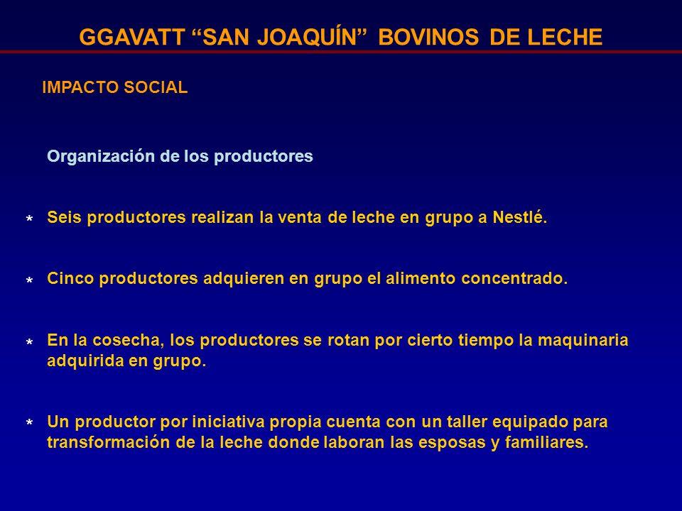 GGAVATT SAN JOAQUÍN BOVINOS DE LECHE IMPACTO SOCIAL Organización de los productores Seis productores realizan la venta de leche en grupo a Nestlé. Cin