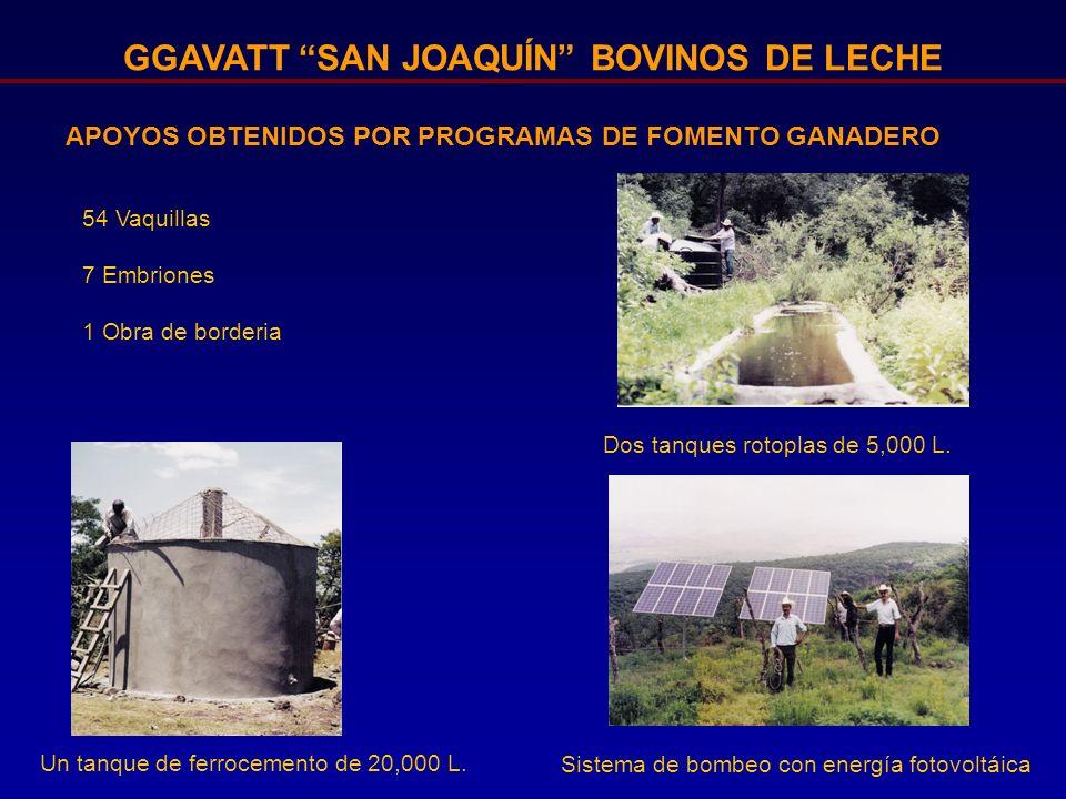 GGAVATT SAN JOAQUÍN BOVINOS DE LECHE APOYOS OBTENIDOS POR PROGRAMAS DE FOMENTO GANADERO Un tanque de ferrocemento de 20,000 L. Dos tanques rotoplas de