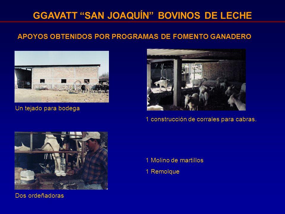 GGAVATT SAN JOAQUÍN BOVINOS DE LECHE APOYOS OBTENIDOS POR PROGRAMAS DE FOMENTO GANADERO 1 construcción de corrales para cabras. Dos ordeñadoras 1 Moli