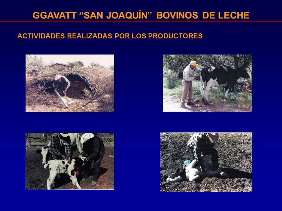 GGAVATT SAN JOAQUÍN BOVINOS DE LECHE ACTIVIDADES REALIZADAS POR LOS PRODUCTORES
